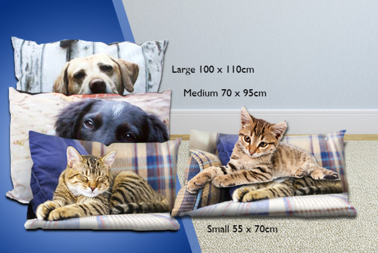 £19.99 instead of £40 (from Great Photo Gifts) for a small personalised photo pet bed, £24.99 for a medium, £29.99 for a large - save 50%