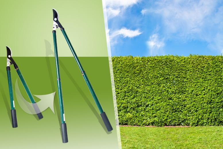 £10 instead of £59.99 (from Groundlevel) for a pair of extendable garden loppers - save 83%