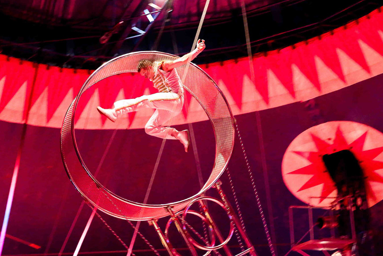 £11 instead of up to £23 for a grandstand ticket to The Continental Circus Berlin, Edinburgh - save up to 52%