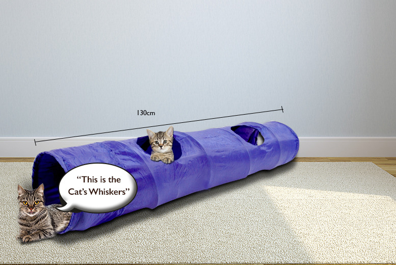 £7.99 instead of £26 (from Groundlevel.co.uk) for a large pop out cat tunnel – save 69%