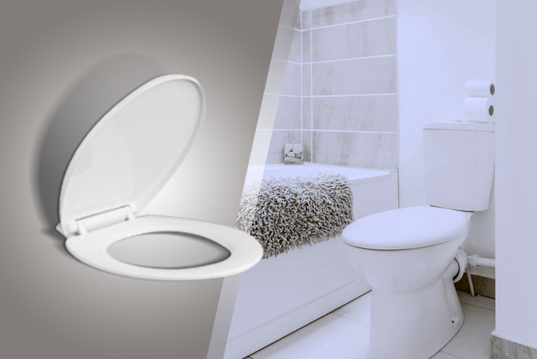 £8.99 instead of £29.99 (from Juggernet.com) for a soft-closing toilet seat - save 70%
