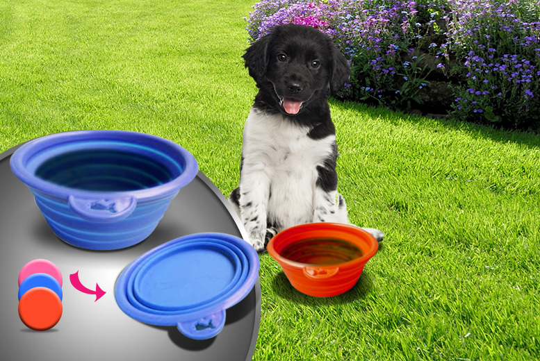 £6.99 instead of £44.97 (from The Treasure Chest) for 3 collapsible pet feeding bowls - save a barking mad 84%