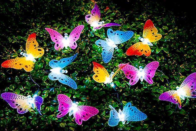 £7.99 instead of £35 (from Urshu) for a set of 12 butterfly or flower garden solar lights - save 77%