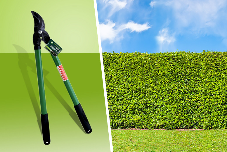 "£8 instead of £49.99 (from Groundlevel.co.uk) for a pair of 21"" garden loppers -  save 84%"
