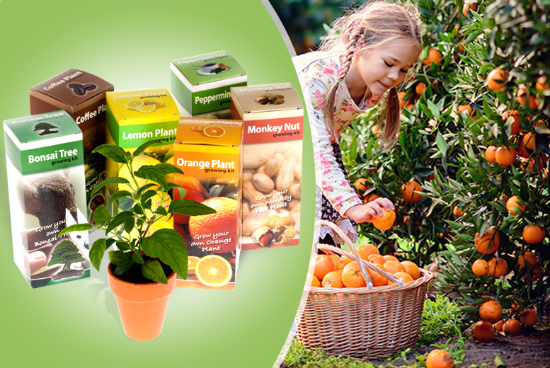 £12 instead of £24.99 (from You Garden) for a 6-piece kids' gardening set - save 52% + delivery is included!