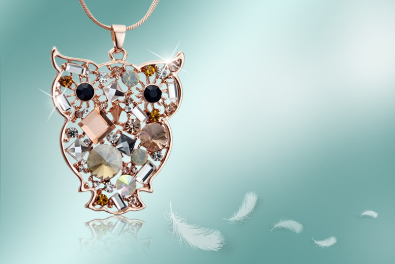£10 instead of £45 (from Cian Jewels) for an owl necklace made with Swarovski Elements - save a sparkling 78%