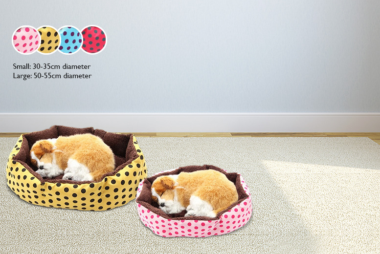 £9.99 instead of £59.99 (from Gizmo Gadgets) for a small pet bed in a choice of colours, £12.99 for a large pet bed - save up to 83%