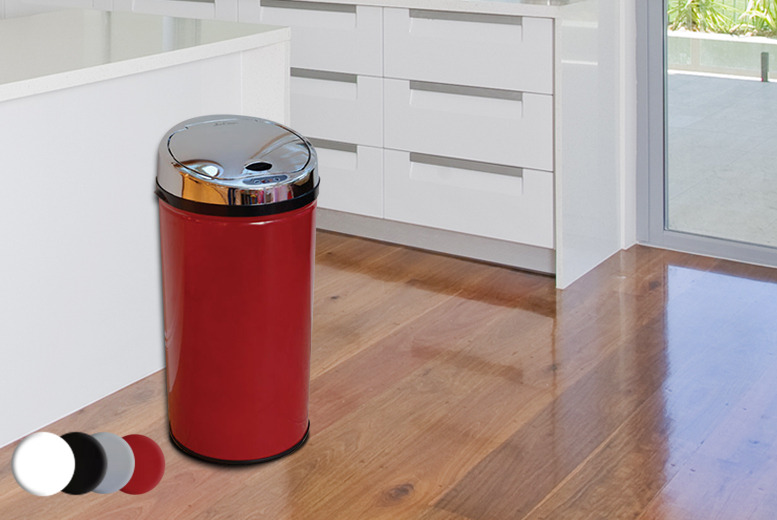 £39.99 instead of £97.95 (from Jean Patrique) for a 45 litre automatic sensor bin - save 59%