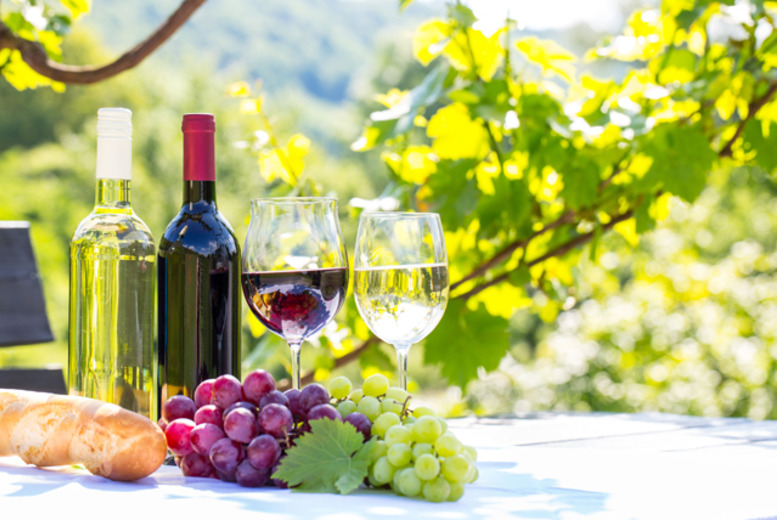 £44 (from Buy A Gift) for a vineyard tour, tasting and lunch for 2 - choose from 4 locations!