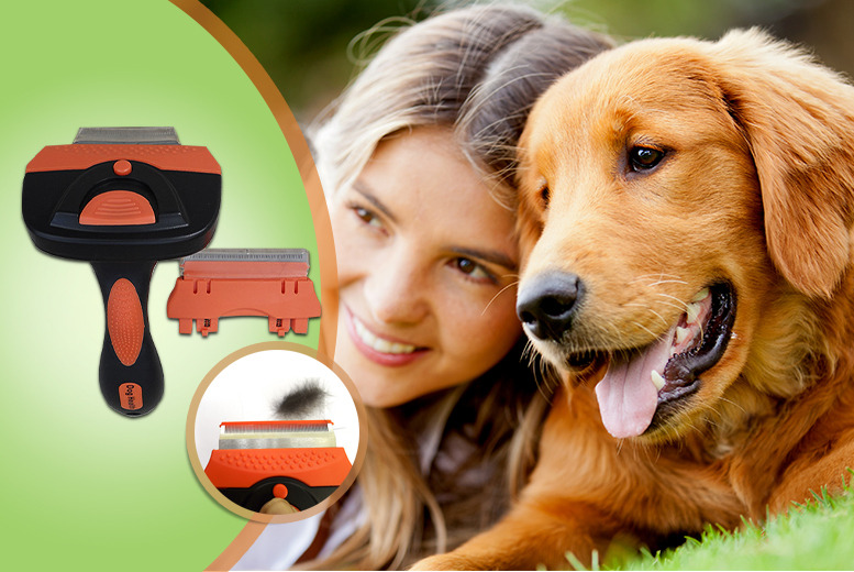 £11.99 instead of £21.50 (from Dog Health) for a doggy de-shedding and grooming comb - save 44%