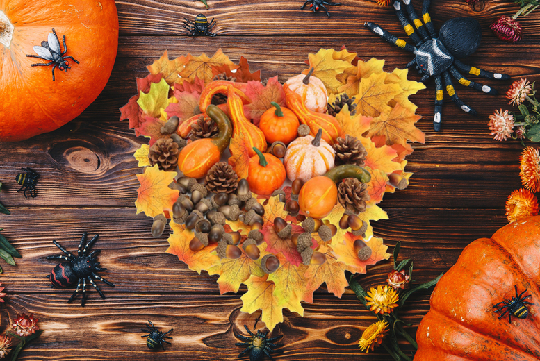 From £5.99 instead of £29.99 for a set of Halloween decorations including artificial pumpkins, autumn leaves, acorns a