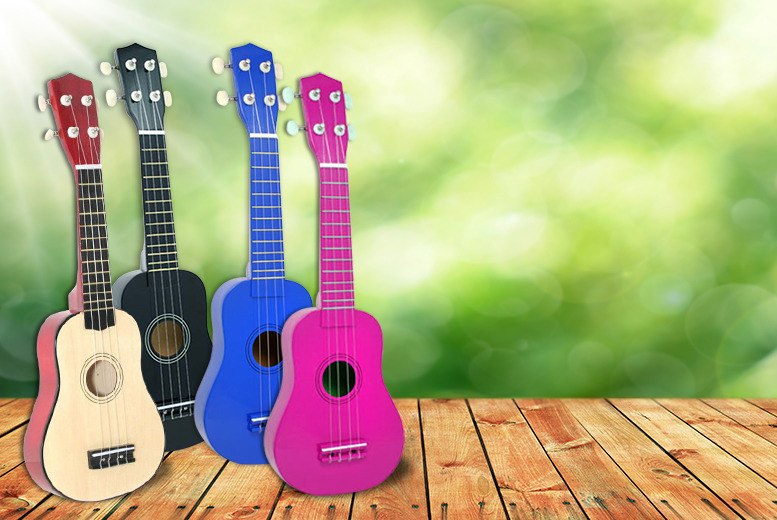 £12.99 instead of £17.98 (from Sue Ryder) for a ukulele and carry bag - save 28%