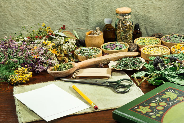 £16 instead of £199 (from Centre of Excellence) for an online master herbalist diploma course, £21 for the advanced course, £26 for both courses - save up to 92%