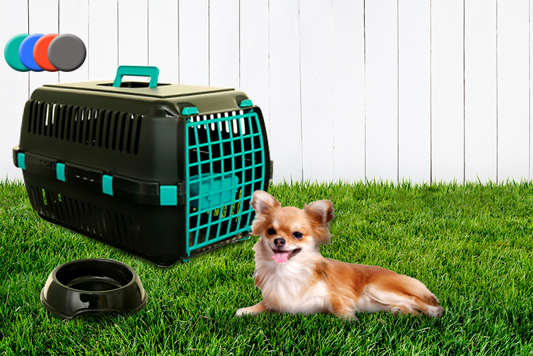 £12.99 (from Whitefurze) for a pet travel carrier and food bowl - transport your furry friends in style!