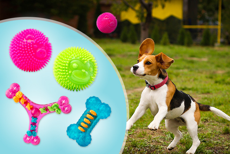 £5.99 instead of £9.98 for a dog ball and chew toy, or £9.99 for 2 balls and 2 toys  from Wowcher Direct - save up to 40%
