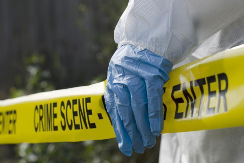 £29 instead of £395 (from Aim Redstone) for an 8-part online crime scene investigation course - save a super-sleuthing 93%