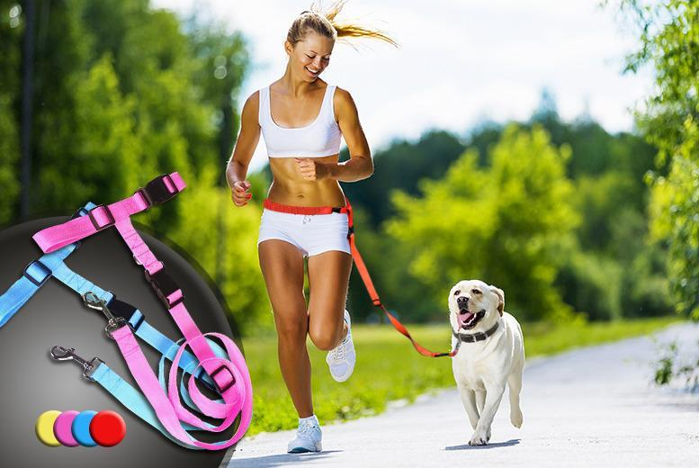 £7.99 (from Gizmo Gadgets) for a hands-free dog lead in a choice of colours, £14.99 for 2 or £19.99 for 3