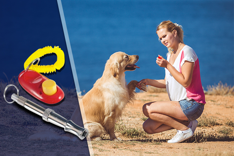 £5.99 instead of £13.99 (from The Treasure Chest) for a dog training whistle and clicker set – teach your pooch obedience and save 57%