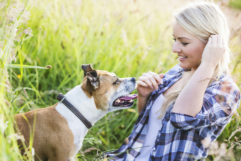 £9 for a dog photoshoot with 1 print or1 digital image, £12 with 2 prints or 2 digital images with Cat's Dog Photography, Preston - save up to 82%