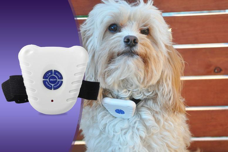£4.99 instead of £22.01 (from Aven Republic) for an ultrasonic dog collar that aims to reduce barking, or £8.99 for 2 collars - save up to 77%