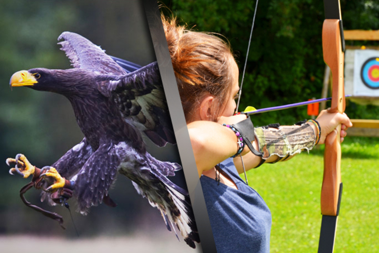 £24 for a 3hr 'Raptor & Reload' bird handling and target shooting experience for 1, or £36 for 2 at Field Sports Centre, Bedford - save up to 76%