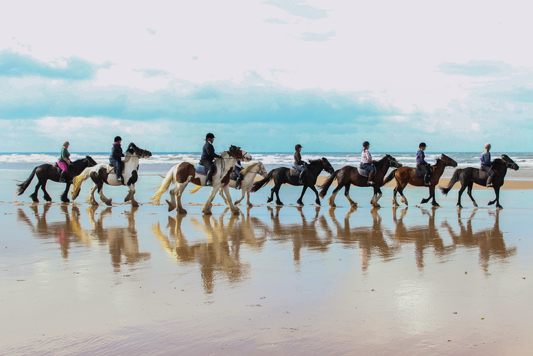 £19 for a horse riding beach trek for 1 person, £38 for 2 or £69 for up to 4 from Murthwaite Green Trekking Centre – save up to 62%