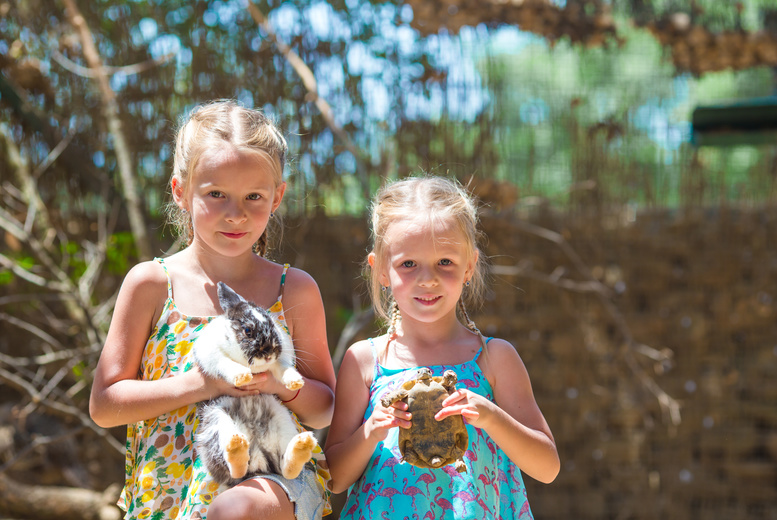 £7 instead of £35 for a reptile or small animal experience for one person, or £12 for two people at Viaduct Animal Sanctuary and Petting Zoo, Bristol - save up to 80%