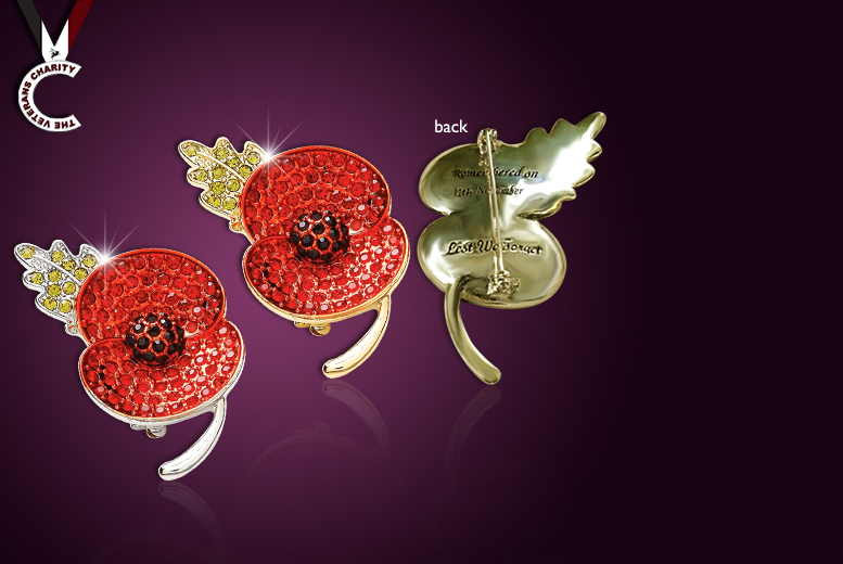 £8 instead of £50 (from Cian Jewels) for an engraved poppy remembrance brooch made with Czech crystals - save 84%
