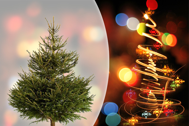 £29.99 instead of £89.99 (from Creekside Christmas) for a sml xmas tree, £39.99  for med or £45.99 for lrg - save up to 67% + FREE DELIVERY