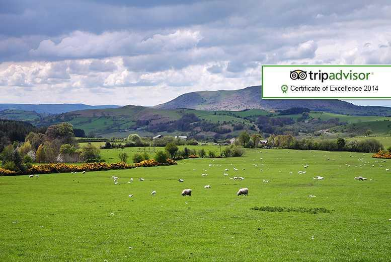 £49 for a 1-night stay for 2 people including breakfast, £79 for 2 nights or £119 for 3 nights at The Ship Inn