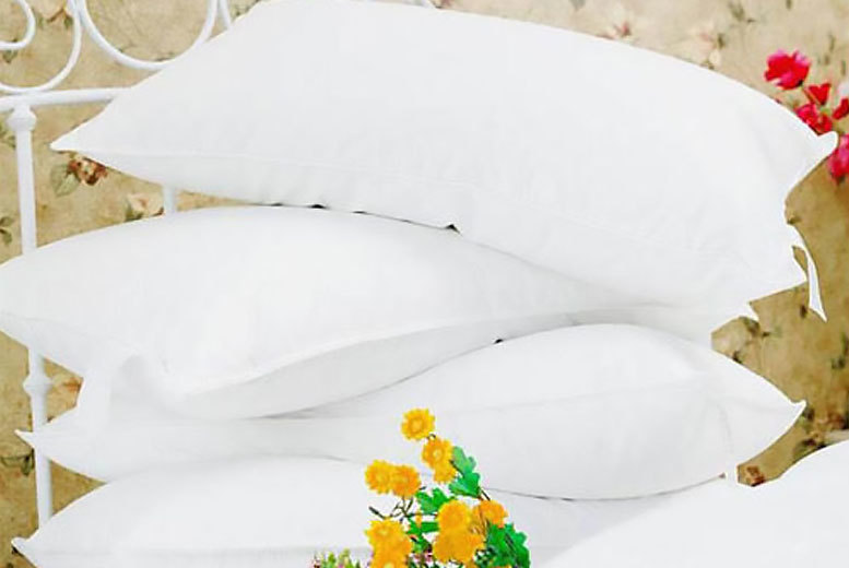£19.99 instead of £104 (from Ehome store) for four goose feather & down pillows - save 81%