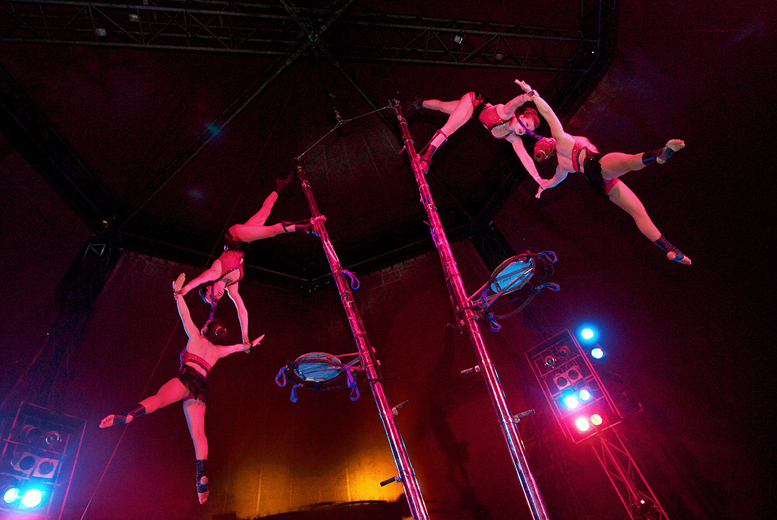 £7.50 instead of £15 for a front circle ticket to the Netherlands National Circus - save 50%