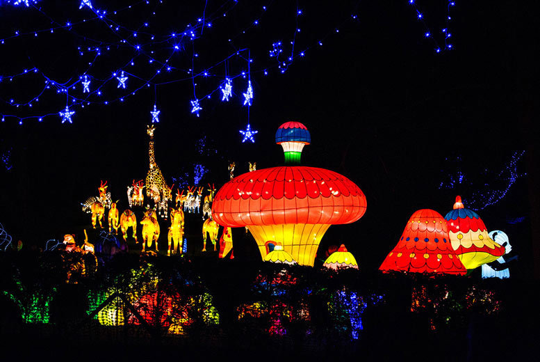 £12 instead of £18.50 for weekday entry for one person to the Magic Lantern Festival London, £14 for Sunday entry -  save up to 35%