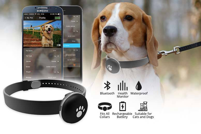 £9.99 instead of £49.99 (from Pettorway) for a Petrover pet activity and fitness monitor - save 80%