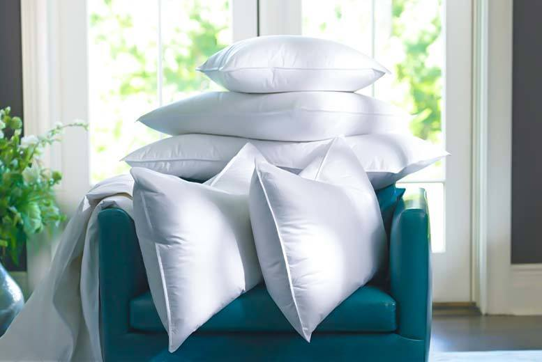 £9.99 instead of £78.99 (from Home Furnishings Company) for two duck feather and down pillows  - save 87%