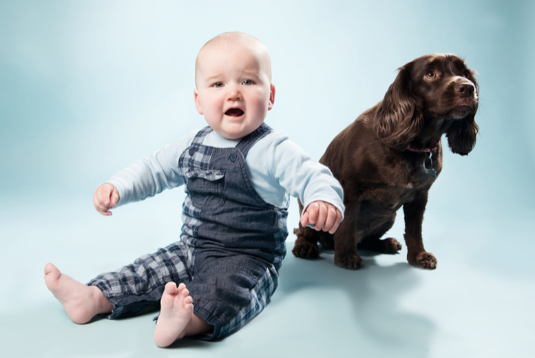 £9 instead of £40 for a 1-hour pet photo shoot and print from Nicola Bald Photography, Haymarket - save 78%