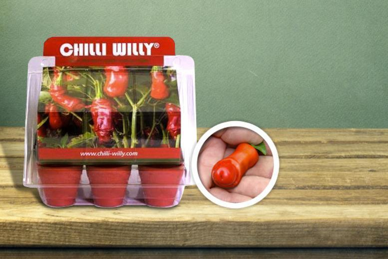 £6.99 instead of £9.99 for a Chilli Willy greenhouse kit with 6 pots - save 30%