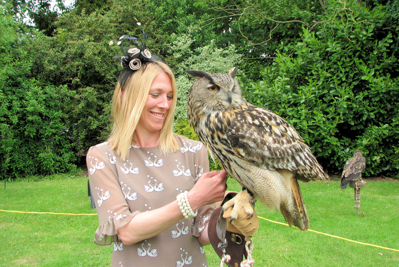 £24 instead of £75 for a 3-hour 'Meet the Birds' experience for one, £43 for two at Predator Power, Leicestershire - save up to 68%