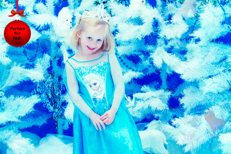 £9 instead of up to £80 for a Frozen-inspired photoshoot for 2 inc. 2 key rings and a fridge magnet at Seven Springs Studios - save up to 89%