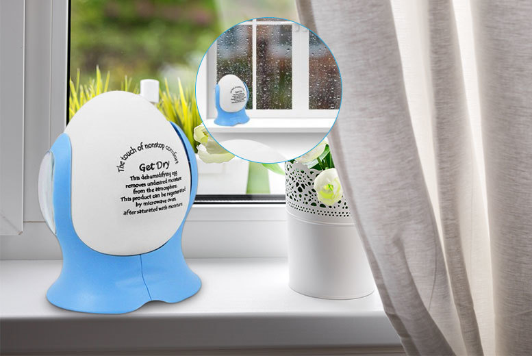 £5.99 instead of £29.99 (from Fusion Online) for two dehumidifier eggs, £10.99 for four, or £16.99 for six - save up to 80%