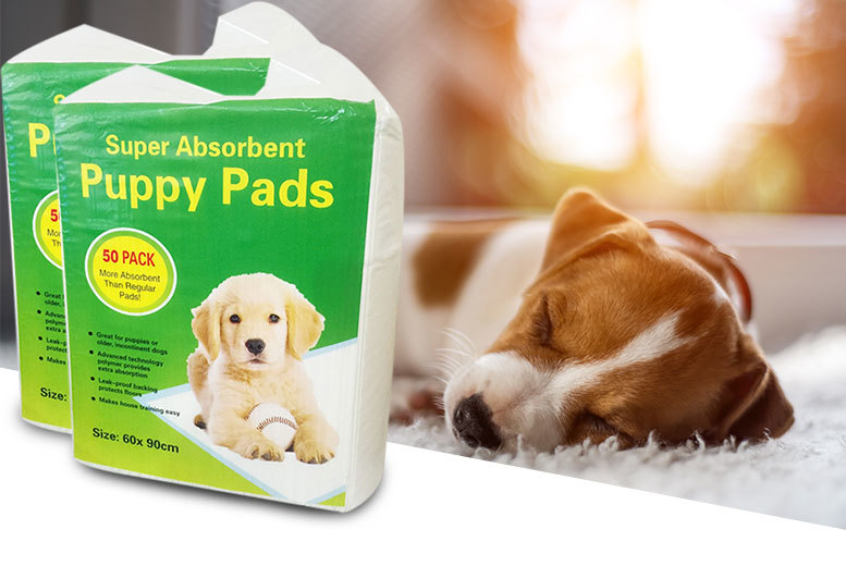 £19.99 instead of £36 (from A2B Shopping) for a pack of 100 puppy training pee pads and bone shaped bag dispenser with one roll of poo bags  - save 44%