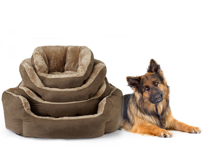£11 instead of £16 (from Bunty Pet Products) for a small Bunty Polar pet bed, £13 for a medium bed, £15 for a large bed, or £17 for an XL bed - save up to 31%