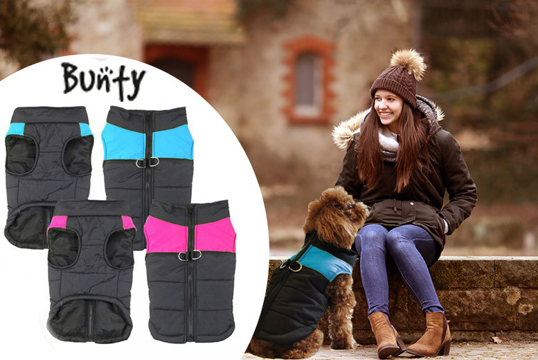 £3.99 instead of £7 (from Bunty) for an extra-small padded dog coat, £4.99 for a small, £5.99 for a medium, £6.99 for a large, or £7.99 for an XL - save up to 43%