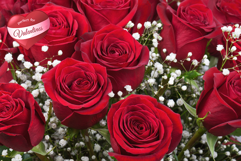 £39.50 for a dozen hand-tied red roses from The Personal Touch Flowers, Leicester  - save 44%