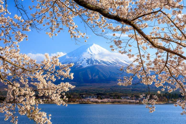 From £699 (from ClearSky Holidays) for a seven-night Tokyo trip and flights, from £849pp for ten nights or pay a £150pp deposit today - save up to 23%