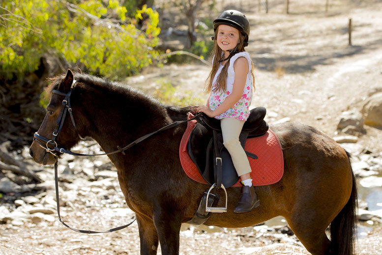 £9 for a 30-minute pony riding lesson for ages 3-6 with a soft drink, or £13 for a one-hour lesson for ages 7+ at Mill House Riding Centre, Fishburn - save up to 40%