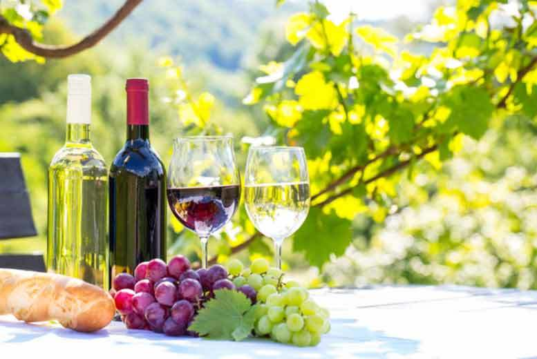 £49 for a vineyard tour, tasting and lunch or afternoon tea for two from Buyagift - choose from seven locations!