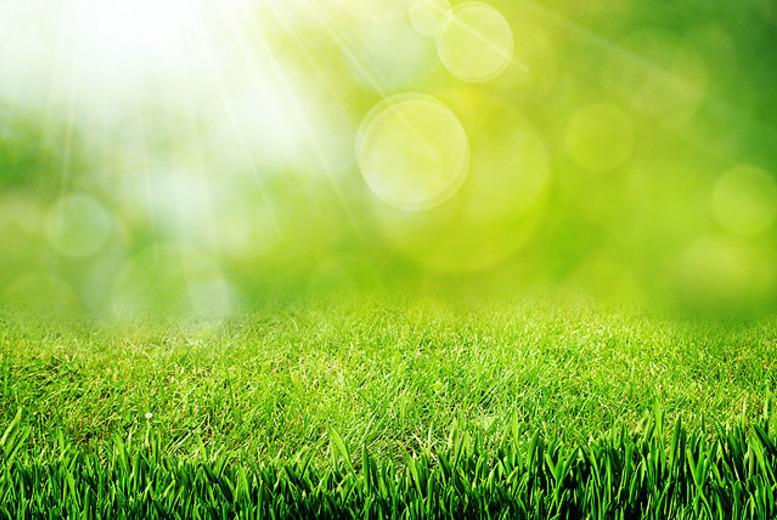 £19 for a spring lawn care package inc. three lawn treatments and full lawn condition analysis from Tom Thumb Lawn Care