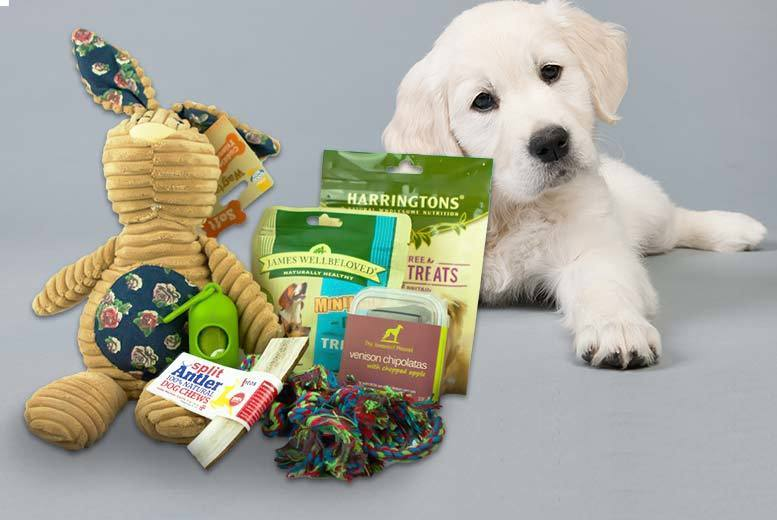 £10 instead of £15.40 for a dog treat box including healthy treats, toys and accessories from The Hound Haus - save 35%