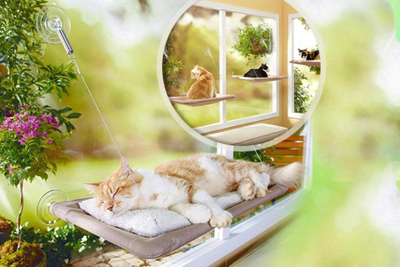 £7.99 instead of £29.99 (from London Exchainstore) for a cat sunshine window bed - get the purrfect place to kitty to sleep & save 73%